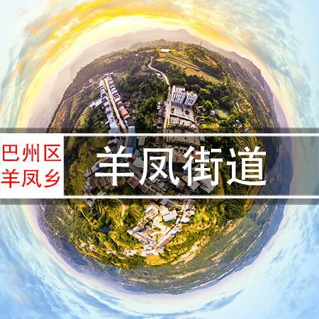 羊凤乡街道720VR全景