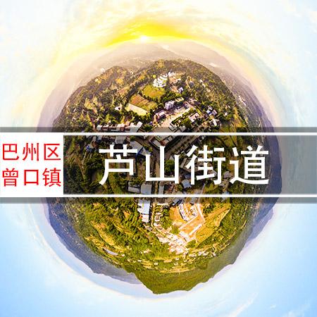 曾口镇芦山街道720VR全景