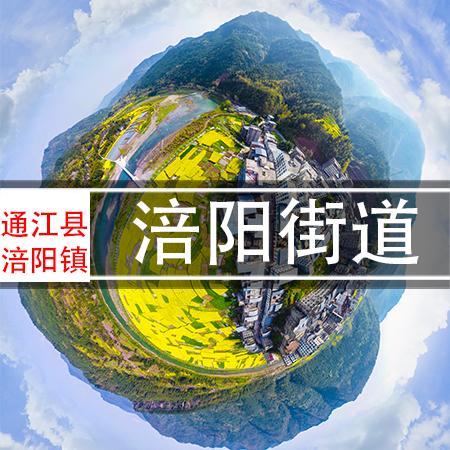 涪阳镇VR全景漫游